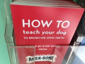 How to Teach Your Dog